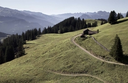 Ferien auf der Alp Rona Praettigau -  12