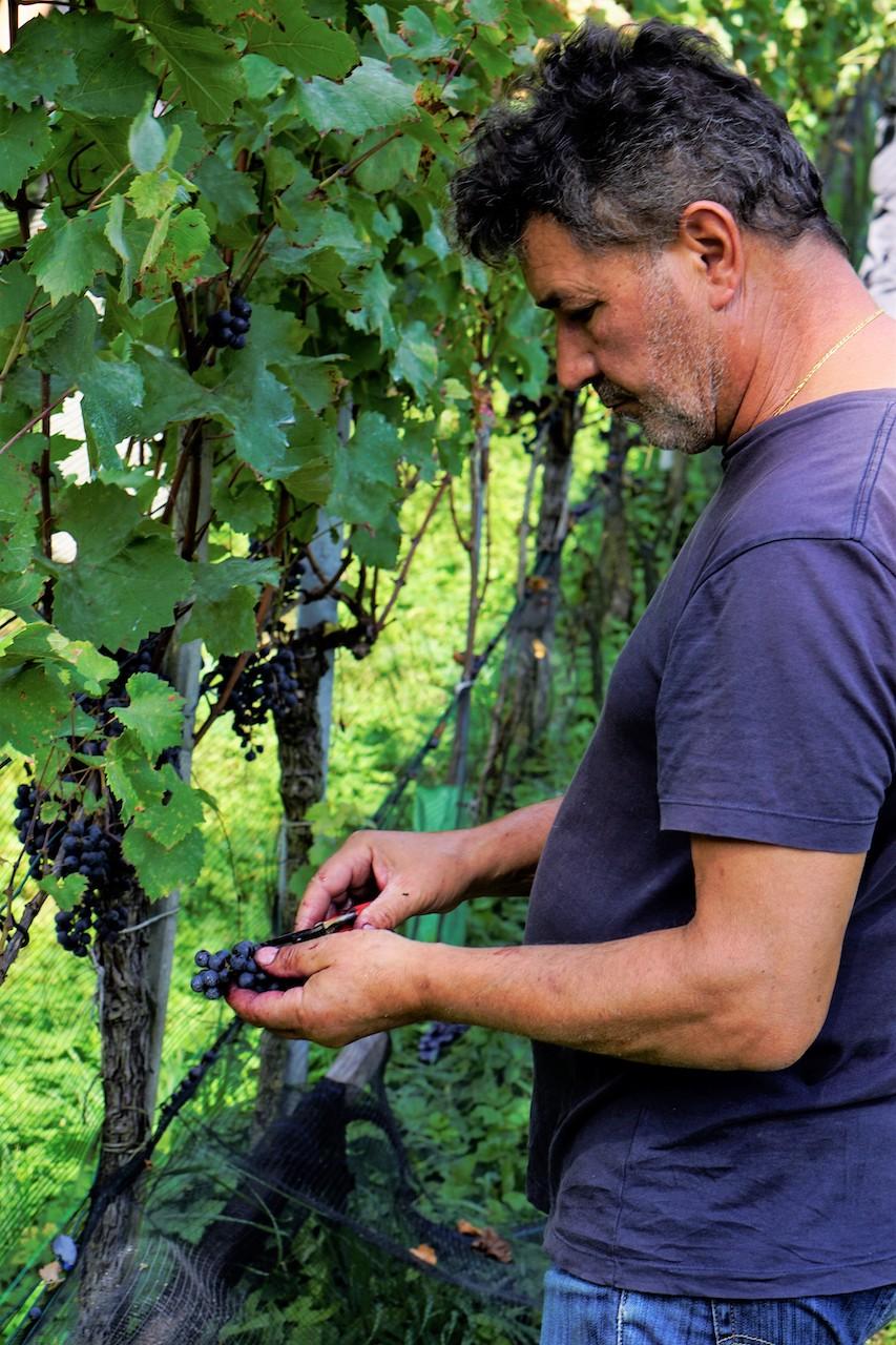 8_CasaNova Wein Pur (5)