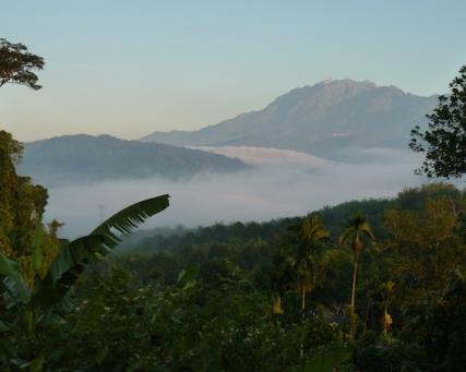 Borneo – Ein Leben zwischen Stadt, Dschungel und Palmölplantagen