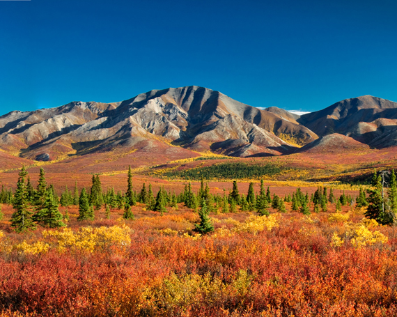 Kanada – Wildnis & Naturparadies