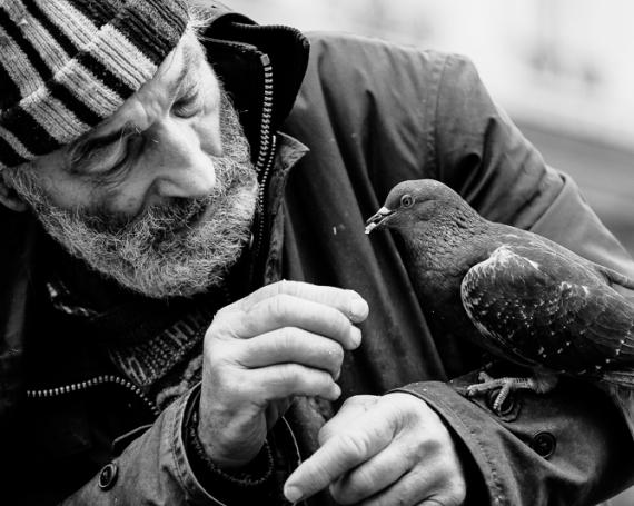 Bär drückt ab – Obdachlos an Weihnachten