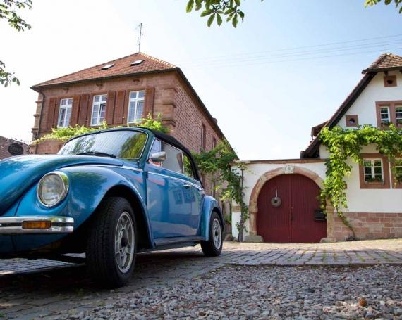 Top 5 – Erlebnisse entlang der Deutschen Weinstrasse