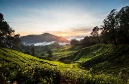 Landschaft Malaysia