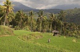 Bali Tipps Hotels Restaurants Shopping 04