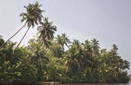 Sri Lanka Rundreise 10