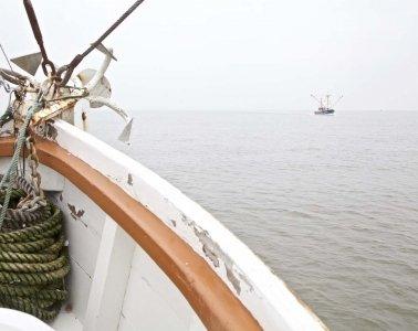 Die Nordsee Krabbenfischerei 06