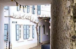 Weinstrasse Pfalz 129