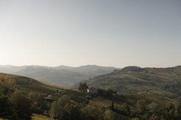 Piemonte Landscape